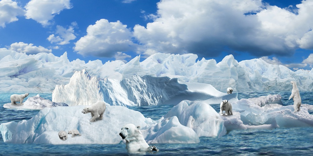 Winter - Eisbären_gerhard_g-pixabay
