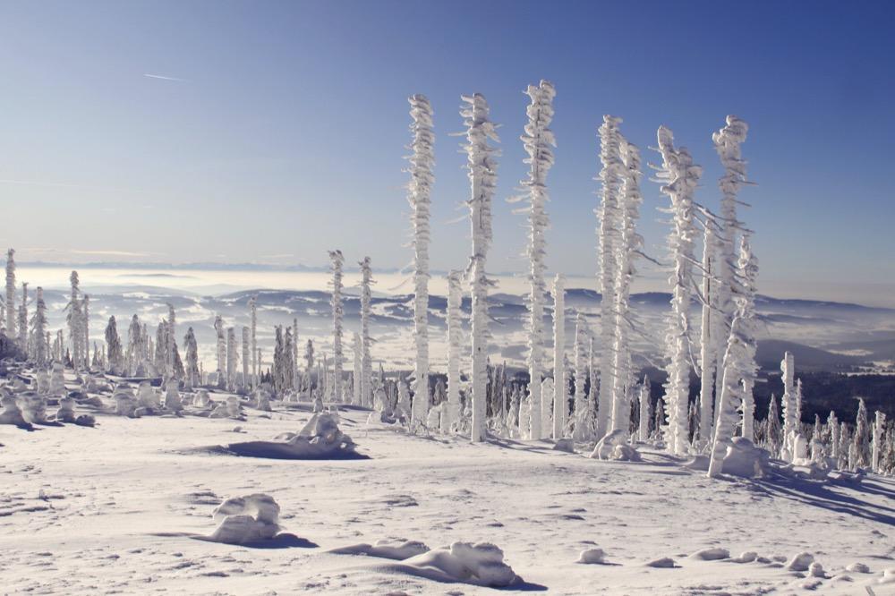 Winter - Schneelandschaft_pics_kartub-pixabay